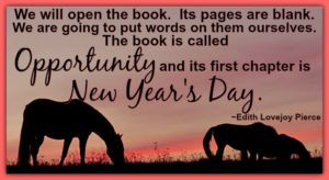 The Book Called Opportunity