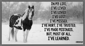 I've Learned.